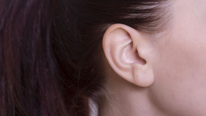 歌が上手い人と音痴な人の違いは「耳」の能力に差がある・音程のとり方